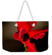 Paso Doble Fire Weekender Tote Bag