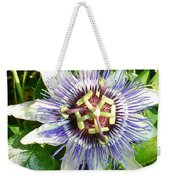 Passiflora Against Green Foliage In A Garden  Weekender Tote Bag