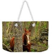 Patagonian Packhorse Weekender Tote Bag