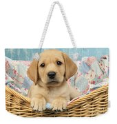 Patchwork Puppy Dp793 Weekender Tote Bag by Greg Cuddiford