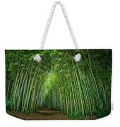 Path Through Bamboo Forest E139 Weekender Tote Bag