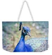 Pavo Cristatus II Indian Blue Peacock Weekender Tote Bag