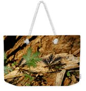 Peaceful Shadow In The Woods Weekender Tote Bag