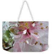 Peach Blossom In Ice Two Weekender Tote Bag