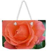 Peach Faced Rose Weekender Tote Bag