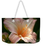 Peach Perfection Weekender Tote Bag