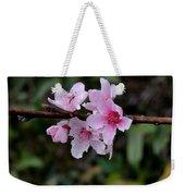 Peach Tree Blooms Miskitos Swoon Weekender Tote Bag