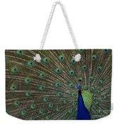 Peacock 17 Weekender Tote Bag