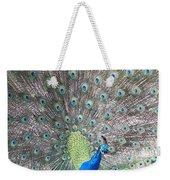 Peacock Bow Weekender Tote Bag