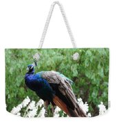 Peacock On A Rock 1 Weekender Tote Bag