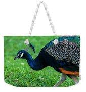 Peacock Portrait 5 Weekender Tote Bag