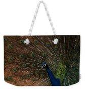 Peacock Show Off Weekender Tote Bag