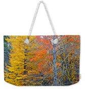Peak And Past Foliage Weekender Tote Bag