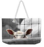 Peek - A - Boo Weekender Tote Bag