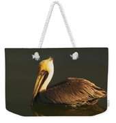 Pelican At Dark Weekender Tote Bag