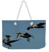 Pelican Collage Weekender Tote Bag