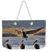 Pelican Coming In For Landing Weekender Tote Bag by Dan Friend