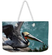 Pelican Lift Off Weekender Tote Bag