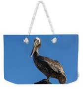 Pelican Watch Weekender Tote Bag
