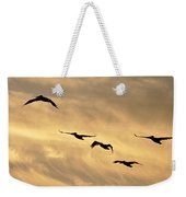 Pelicans Against A Golden Sky Weekender Tote Bag
