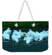 Pelicans Hanging Out Weekender Tote Bag