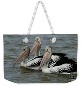 Pelicans In Australia 3 Weekender Tote Bag