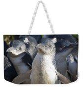 Penguins Weekender Tote Bag by Steven Ralser