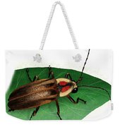 Pennsylvania Firefly Weekender Tote Bag