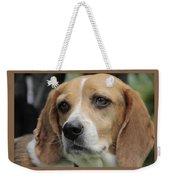 The Beagle Named Penny Weekender Tote Bag