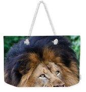 Pensive Lion Weekender Tote Bag