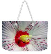 Peppermint Flame 04a Weekender Tote Bag