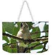 Perched Hummingbird Weekender Tote Bag