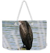 Perching Cormorant Weekender Tote Bag