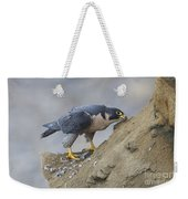 Peregrine Cleaning Beak Weekender Tote Bag