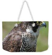 Peregrine Falcon 1 Weekender Tote Bag