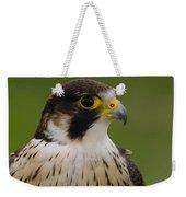 Peregrine Falcon Portrait Ecuador Weekender Tote Bag