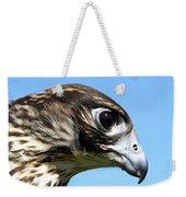 Peregrine Falcon Tashunka Weekender Tote Bag