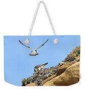 Peregrine Falcons - 2 Weekender Tote Bag
