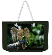 Perigrine Falcon Weekender Tote Bag