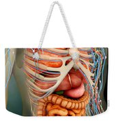 Perspective View Of Human Body, Whole Weekender Tote Bag