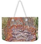 Petrified Stump Weekender Tote Bag