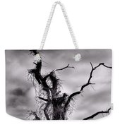 Petrified Tree Weekender Tote Bag