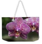 Phalaenopsis Helen Alice Mary 2220 Weekender Tote Bag