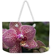 Phalaenopsis Helen Alice Mary 2308 Weekender Tote Bag