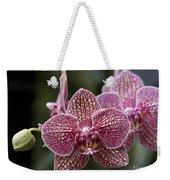 Phalaenopsis Helen Alice Mary 2346 Weekender Tote Bag
