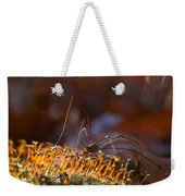 Phalangid Among The Moss Capsules Weekender Tote Bag