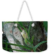 Philodendron Weekender Tote Bag