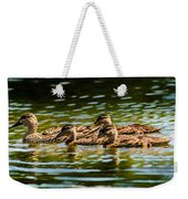 Photography Painting Of Mother And Her Ducklings Weekender Tote Bag