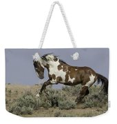 Picasso Leaps Weekender Tote Bag