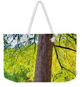 Picnic By The Cypress Weekender Tote Bag